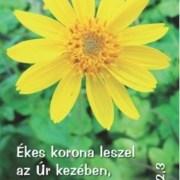Virágok - mini kártyák